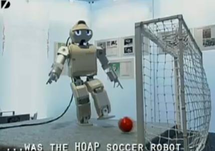 Robots : le robot japonais de l'année.
