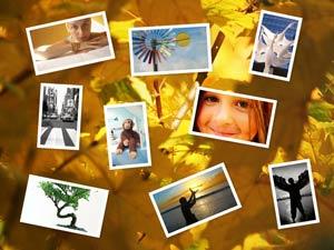 Photovisi : Créer vos fonds d'écran à partir de photos en ligne.
