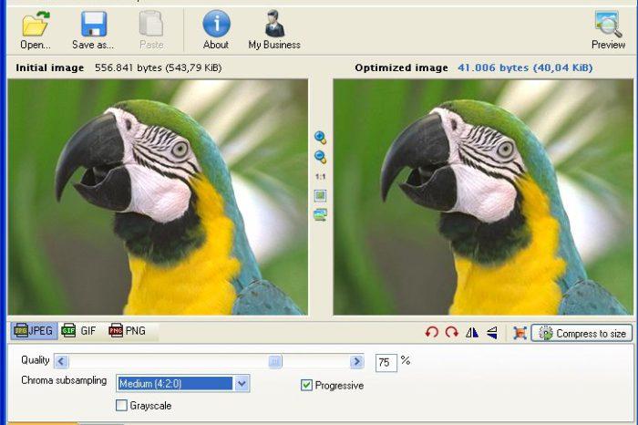 Radical Image Optimization Tool : Réduisez la taille de vos images en surveillant le rendu final.
