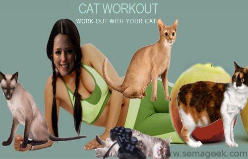 Cat Workout : Utilisez un chat plutôt qu'une Wii Fit pour faire du sport.