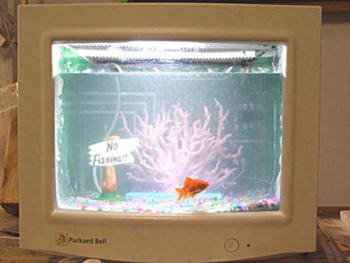crt-fish-tank