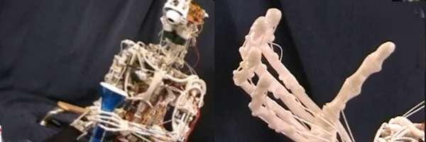 Un robot conçu sur le modèle humain.