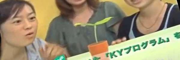 Sega crée une plante robot de compagnie...