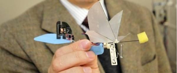 Un robot volant miniature sur le modèle du colibri.