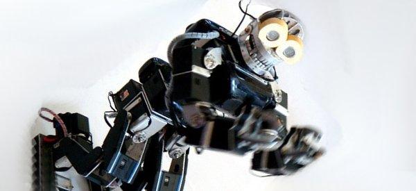 Vidéo : Onimaru 3, un robot qui sait bouger son corps