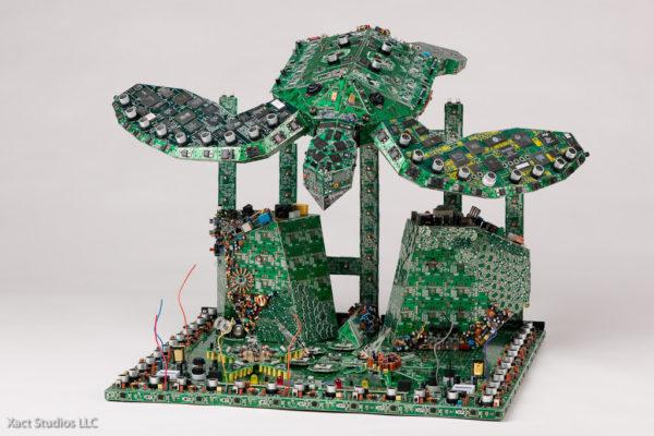 tortue électronique