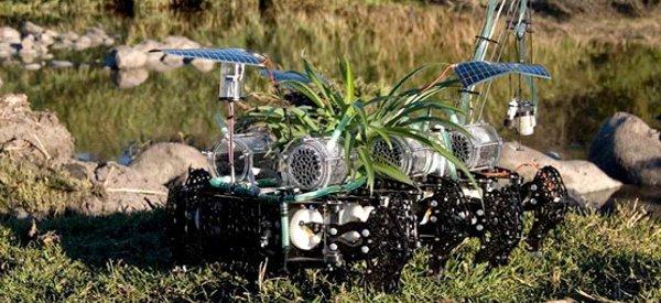 Découverte : Un robot plante nomade qui dépollue les rivières.