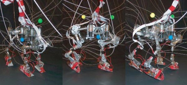 RunBot2 : Le robot quadrupède qui court au galop