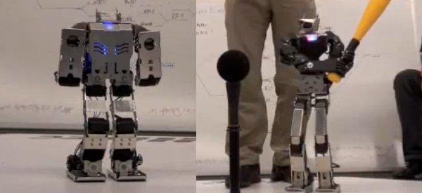 Krunk et Zyn : Les derniers robots de Farell Robotics en Freestyle