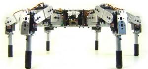 LinxMotion AH3-R : Un robot hexapode avec 18 servo-moteurs pour plus de mobilité.