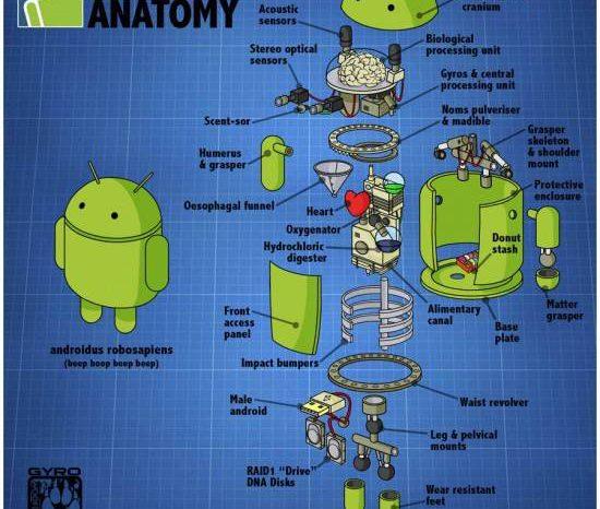Image : Anatomie d'un Bugdroid