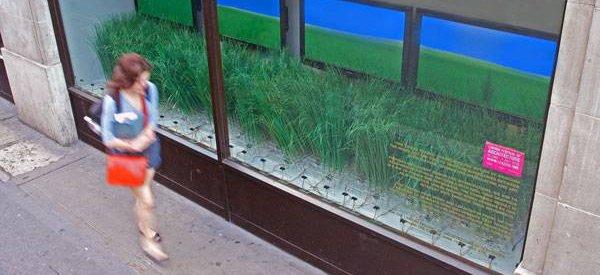 Urban Prairie : De l'herbe interactive au milieu de la ville