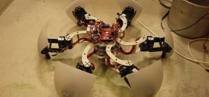 MorpHex : Un robot hexapode capable de morphing