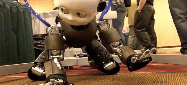iCub : Le robot sur le modèle enfant marche à quatre pattes