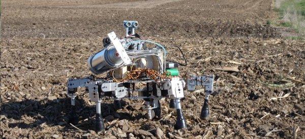 Prospero : Le robot fermier qui va révolutionner l'agriculture