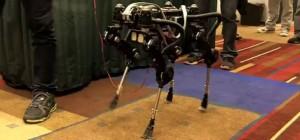 SQ1 : Le robot quadrupède de SimLab
