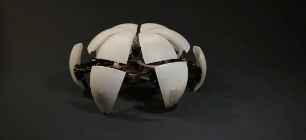 Une nouvelle vidéo du MorpHex, Le robot hexapode modulaire.