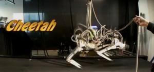Cheetah : Le dernier robot de Boston Dynamics et DARPA qui galope….