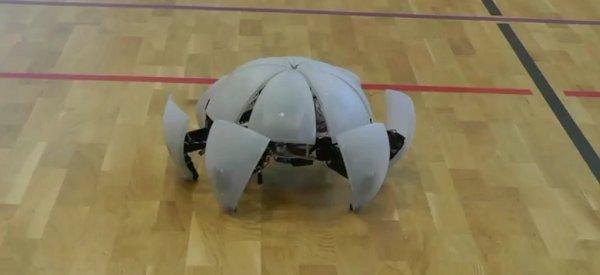 MorpHex : Le robot modulaire qui roule à la perfection.