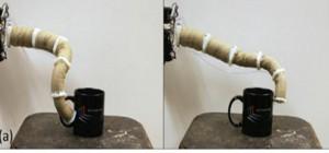 Robotique : Un bras manipulateur sur le modèle de la trompe de l'éléphant