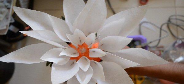 Touch Me Not : Une plante interactive contrôlée par Arduino