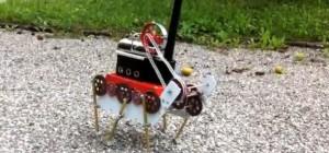 Steam Ant : Un robot hexapode qui se déplace à la vapeur
