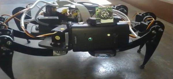 Une nouvelle vidéo du robot hexapode au look d'araignée