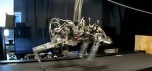 Video : Cheetah le robot quadrupède qui court plus vite qu'un humain