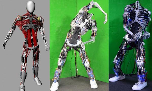 kenshiro-le-robot-fait-de-muscles-et-dos-artificiels