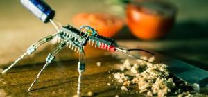 Les sculptures électroniques en forme d'insectes de Luca di Filippo