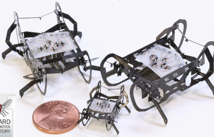 The Harvard Ambulatory MicroRobot : Un petit robot bien rapide
