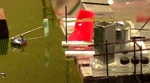 Innovation : Des micro-robots collaboratifs qui construisent des structures