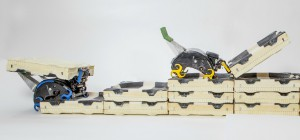 Termes : Des robots constructeurs sur le modèle animal de la termite
